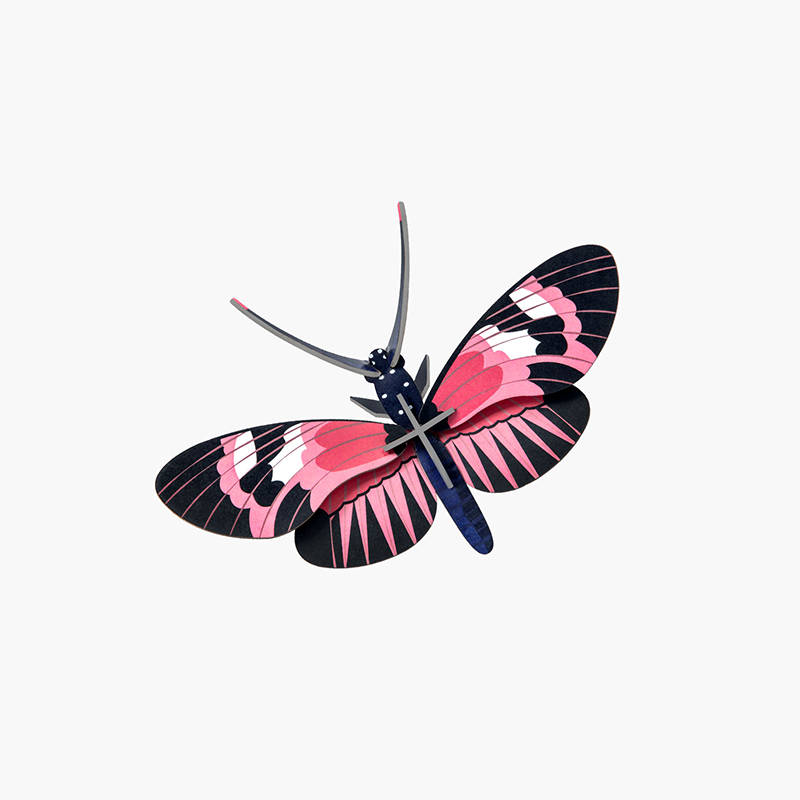 AMODO Studio Roof Longwing Butterfly